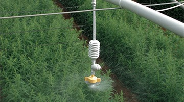 greenhouse spraying irrigation system