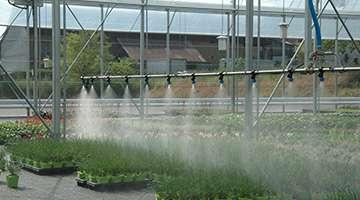 Carrello d'irrigazione di serre