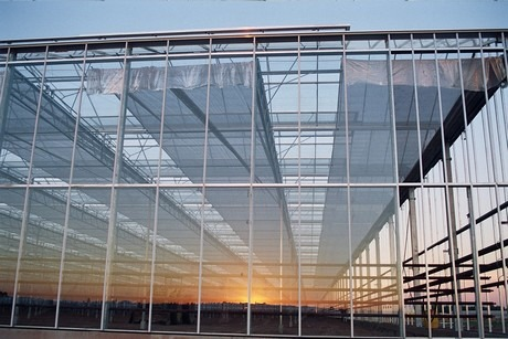 glass-greenhouse2